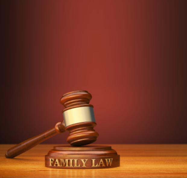 Best and Top Domestic and Divorce lawyers in Chennai