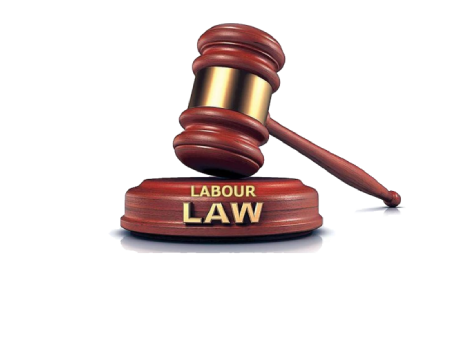 Best and Top Labour Lawyers  in Chennai